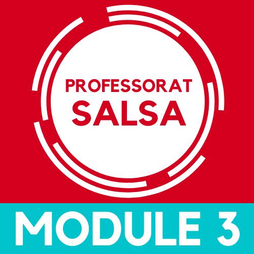 Devenir Professeur de salsa, module 3
